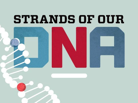 Strands of Our DNA